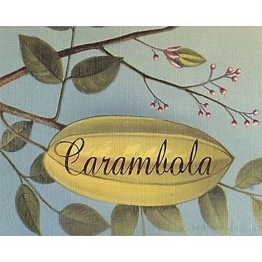 Graffitee Studios Carambola Frutas Tropicales Graphic Art on Wrapped Canvas