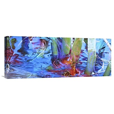 Global Gallery Waterway Prism by Suzanne Silk Graphic Art on Wrapped Canvas