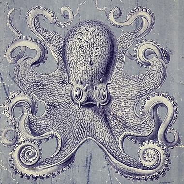 Graffitee Studios Octopus I Graphic Art on Wrapped Canvas