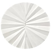 Whatman GE Healthcare Biosciences Grade 2V Filter Paper, 100/Pack
