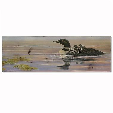 WGI GALLERY Misty Loons Painting Print Plaque; 8'' H x 24'' W x 1'' D