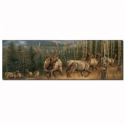 WGI GALLERY Back Country Elk by Rosemary Millette Painting Print Plaque; 4'' H x 12'' W x 0.5'' D