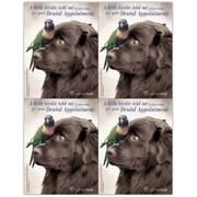 Rachael Hale Laser Postcards, Take Care Dog, Little Birdie, Dental