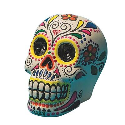 S&S Worldwide Color-Me Unglazed Skull Bank Craft Kit, 12/Pack