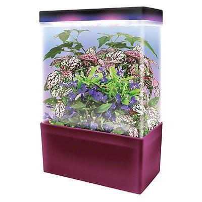 Dunecraft Light Cube Tropical Jungle