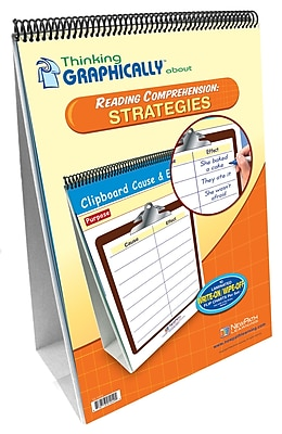 NewPath Learning Thinking Graphically About Reading Comprehension Strategies Flip Chart Set