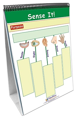 NewPath Learning 10-piece Thinking Graphically about Science Curriculum Mastery Flip Chart Set, Grade 1-7