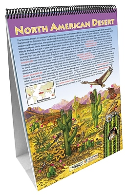 NewPath Learning Biomes Curriculum Mastery Flip Chart Set