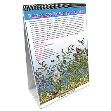 NewPath Learning Classification of Living Things Flip Chart Set