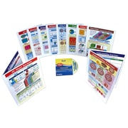 10 Piece Fractions and Decimals Visual Learning Guides Set Grade 3-6
