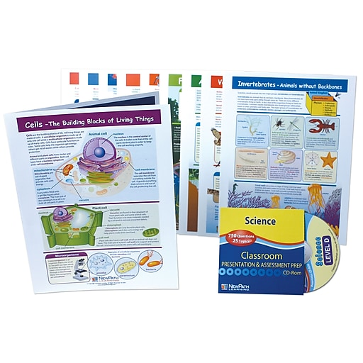 NewPath Learning Science Visual Learning Guides