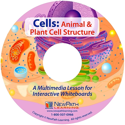NewPath Learning Animal & Plant Cell Structure Lesson