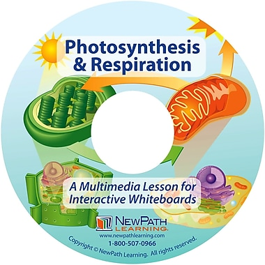 NewPath Learning Photosynthesis and Respiration Multimedia Lesson
