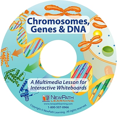 NewPath Learning Chromosomes, Genes & DNA Multimedia Lesson