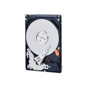 "WD® AV™ 500GB 2.5"" SATA Digital Video Internal Hard Drive"