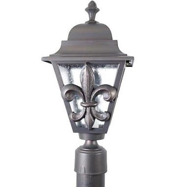 Melissa Americana Fleur De Lis Series 1-Light Lantern Head; Patina Bronze