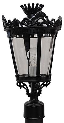 Melissa Tuscany 1-Light Lantern Head; Patina Bronze