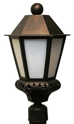 Melissa Tuscany 1-Light Lantern Head; Rusty Nail