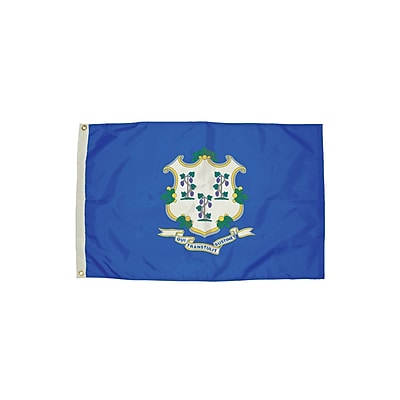 Flagzone Connecticut Flag with Heading and Grommets, 3' x 5', Each