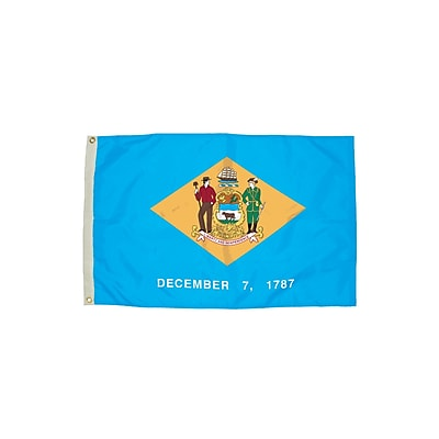 Flagzone Delaware Flag with Heading and Grommets, 3' x 5', Each