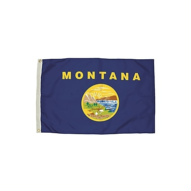 Flagzone Montana Flag with Heading and Grommets, 3' x 5', Each