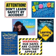 Trend Enterprises® Learning Zone Argus® Poster Combo Pack