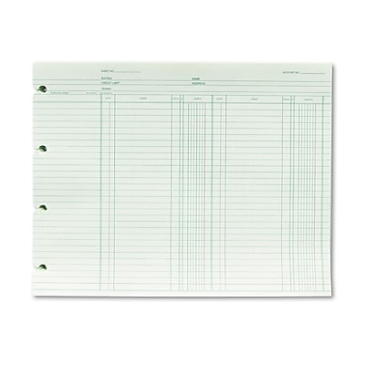 Wilson Jones® Double Entry Ledger Form, Green, 100/Pack (WGN2BA)