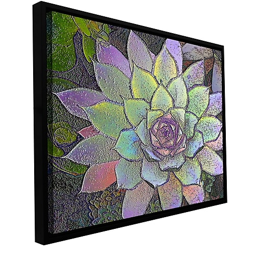 """ArtWall 'Arco Iris Suculento' Gallery-Wrapped Canvas 18"""" x 24"""" Floater-Framed (0uhl004a1824f)"""