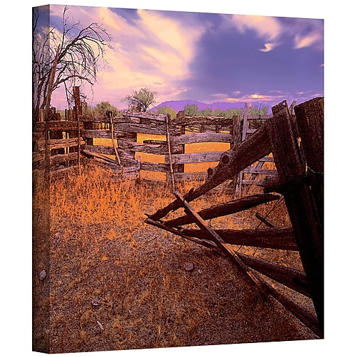 "ArtWall ""Ghost Ranch"" Gallery-Wrapped Canvas 36"" x 36"" (0uhl010a3636w)"