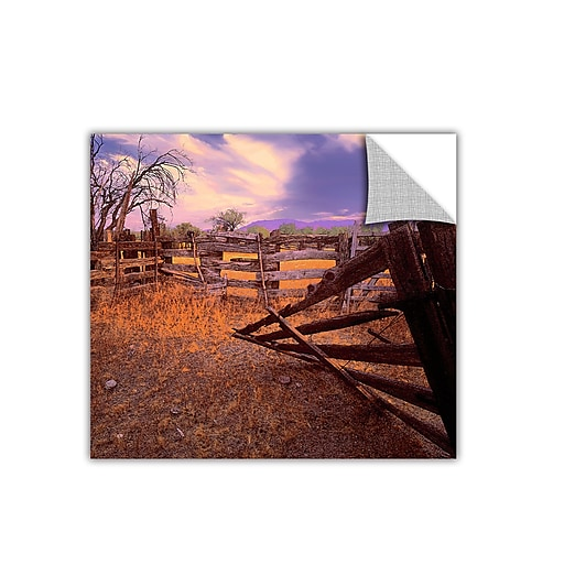 """ArtWall """"Ghost Ranch"""" Art Appeelz Removable Wall Art Graphic 18"""" x 18"""" (0uhl010a1818p)"""