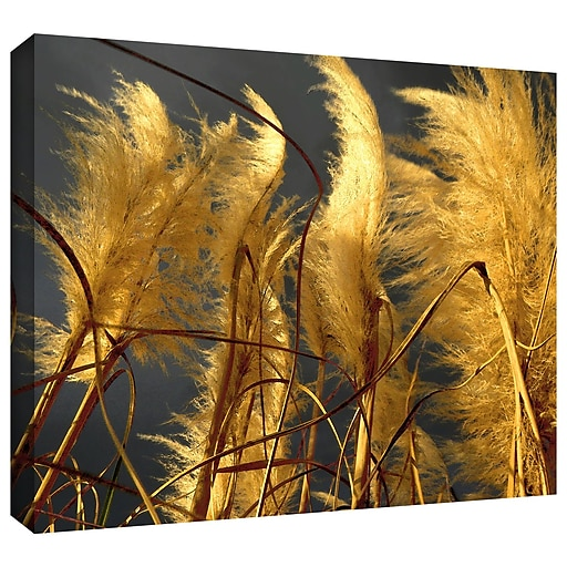 """ArtWall 'Storm Swept' Gallery-Wrapped Canvas 24"""" x 32"""" (0uhl015a2432w)"""