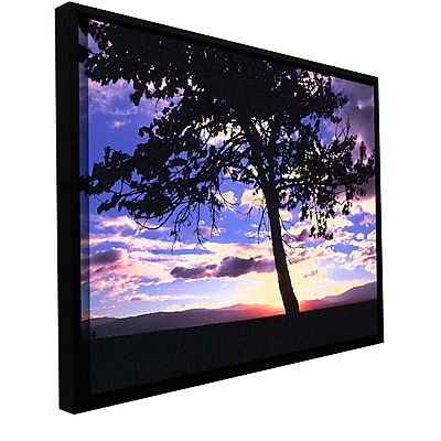 ArtWall 'Teton Meadow Sunrise' Gallery-Wrapped Canvas 18