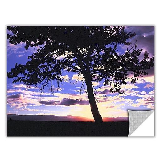 "ArtWall ""Teton Meadow Sunrise"" Art Appeelz Removable Wall Art Graphic 18"" x 24"" (0uhl017a1824p)"