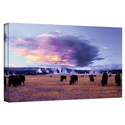 ArtWall 'Yellowstone Autumn' Gallery-Wrapped Canvas 18