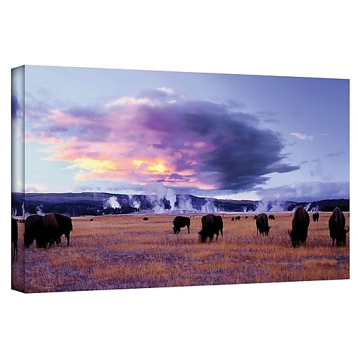 """ArtWall """"Yellowstone Autumn"""" Gallery-Wrapped Canvas 24"""" x 48"""" (0uhl020a2448w)"""