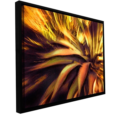 """ArtWall 'Agave Puesta' Gallery-Wrapped Canvas 24"""" x 32"""" Floater-Framed (0uhl021a2432f)"""