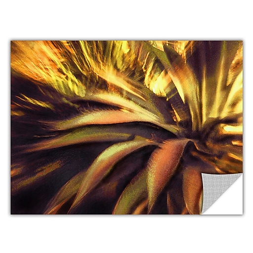 """ArtWall """"Agave Puesta"""" Art Appeelz Removable Wall Art Graphic 24"""" x 32"""" (0uhl021a2432p)"""