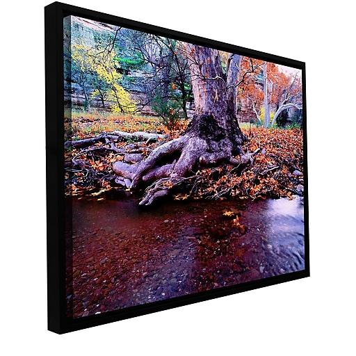 "ArtWall ""Aravaipa Canyon Creek"" Gallery-Wrapped Canvas 24"" x 32"" Floater-Framed (0uhl022a2432f)"