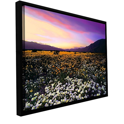 "ArtWall 'Borrego Desert Spring' Gallery-Wrapped Canvas 24"" x 32"" Floater-Framed (0uhl023a2432f)"