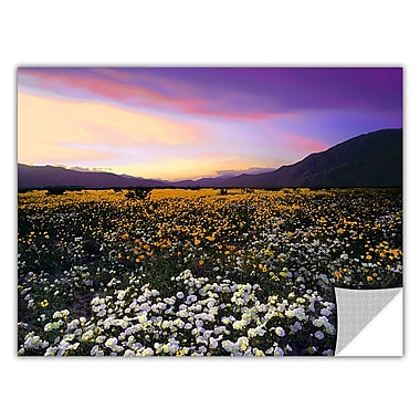 ArtWall 'Borrego Desert Spring' Art Appeelz Removable Wall Art Graphic 18