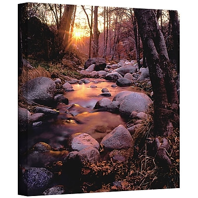 ArtWall 'Domeland Wilderness' Gallery-Wrapped Canvas 24