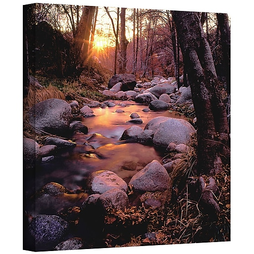 "ArtWall 'Domeland Wilderness' Gallery-Wrapped Canvas 24"" x 24"" (0uhl024a2424w)"