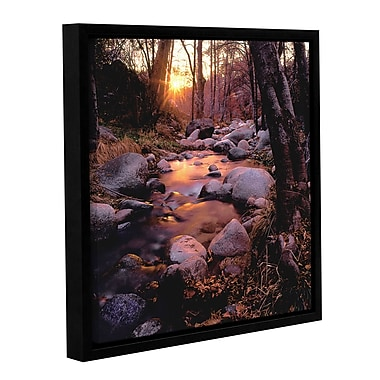 ArtWall 'Domeland Wilderness' Gallery-Wrapped Canvas 14
