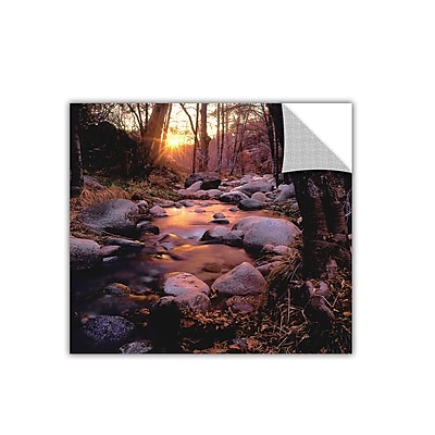 ArtWall 'Domeland Wilderness' Art Appeelz Removable Wall Art Graphic 24