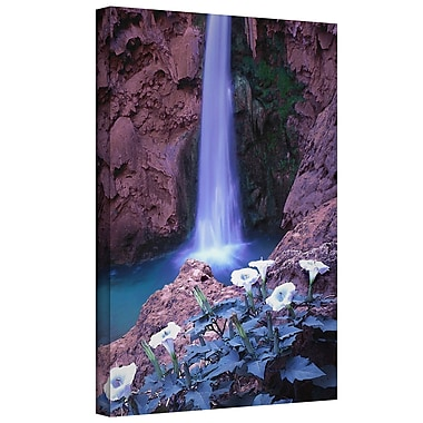 ArtWall 'Havasu Spring' Gallery-Wrapped Canvas 36