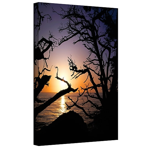 """ArtWall 'Pacific Light' Gallery-Wrapped Canvas 18"""" x 24"""" (0uhl031a1824w)"""