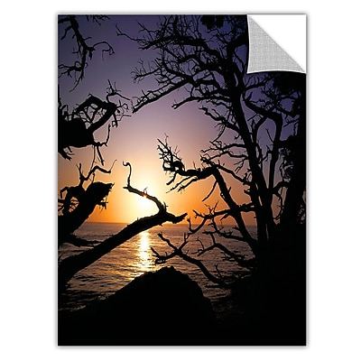ArtWall 'Pacific Light' Art Appeelz Removable Wall Art Graphic 36