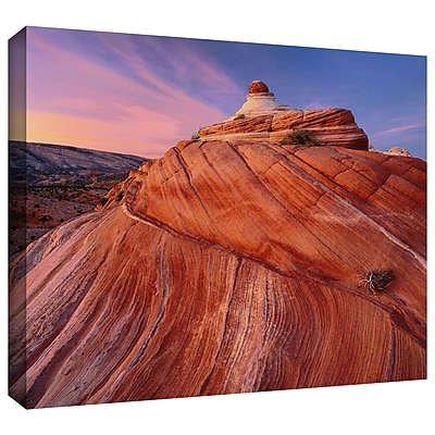 ArtWall 'Paria Wilderness' Gallery-Wrapped Canvas 36