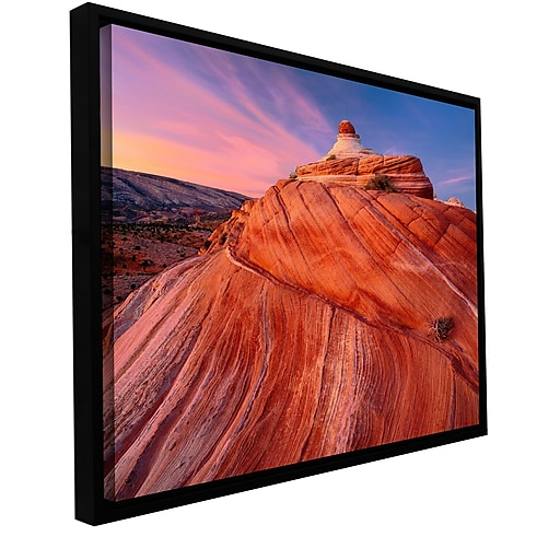 "ArtWall 'Paria Wilderness' Gallery-Wrapped Canvas 36"" x 48"" Floater-Framed (0uhl032a3648f)"