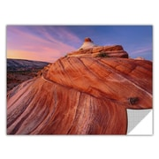"ArtWall 'Paria Wilderness' Art Appeelz Removable Graphic Wall Art 18"" x 24"" (0uhl032a1824p)"